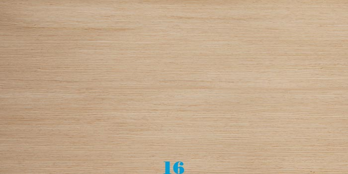 Bảng màu gỗ tự nhiên 16